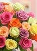 Best Roses in Atlanta, Carithers Flowers