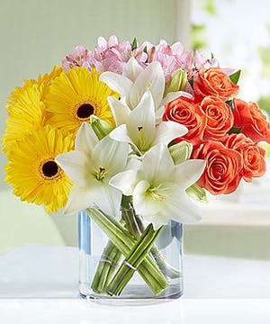 Modern Spring Mix featuring lilies, gerbera daisies and roses
