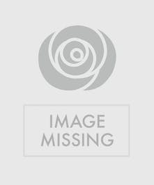 Share The Health Deluxe Fruit & Gourmet Gift Basket