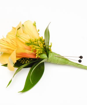 Spring Yellow Alstromeria Lily Boutonniere