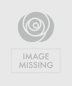 The Christmas Traditions Table Centerpiece   Holiday floral greens, pillar candle, white stock and red roses