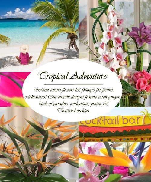 Custom Tropical Adventure