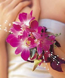 Wrist Corsage of Exotic Orchids