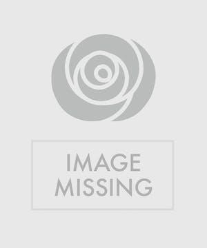 Double White Phaleonopsis Orchid Wrist Corsage with Diamonds