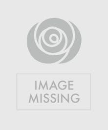The Dreamland Bouquet - Blue hydrangea and purple rose arrangement