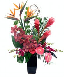 Wild on Ibiza tropical flower arrangements featuring orchids and exotic florals