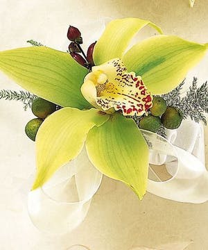 Fashion Green Orchid Corsage