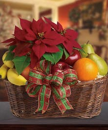 Christmas Poinsettia and Fruit Basket Atlanta