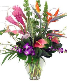 Exotic Tropical Flowers, Flower Delivery Atlanta, Alpharetta, Buckhead, Decatur, Marietta, Roswell