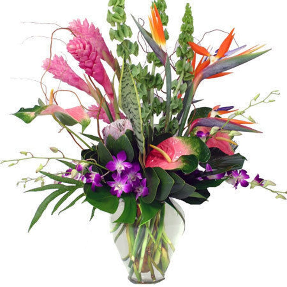 Tropical flowers marietta tropical flower arrangements marietta exotic tropical flowers flower delivery atlanta alpharetta buckhead decatur marietta izmirmasajfo