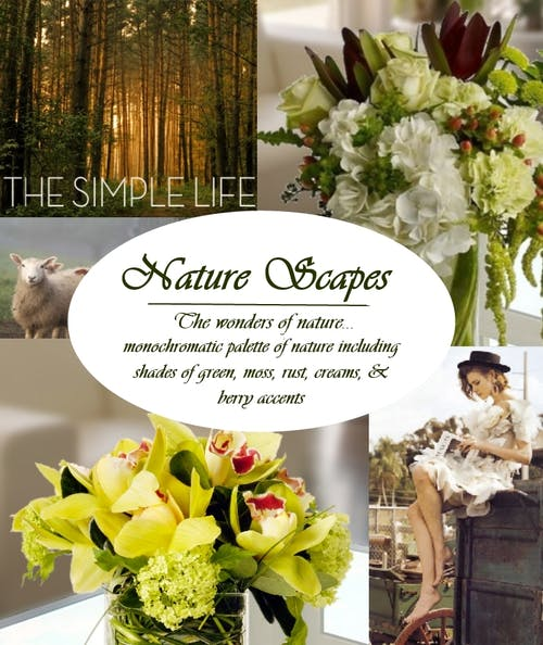 Nature Scapes Theme