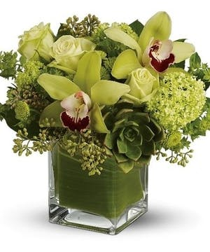 Unusual Flowers, Orchids, Tropicals, Voted Best Florist Atlanta