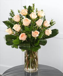 Peach Ecuadorian Mountain Roses, hand-picked in the high elevations where the combination of full sun & cool temperatures create the perfect rose.