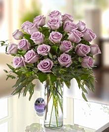 Gorgeous Ecuadorian Lavender Roses