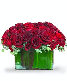Wild at Heart arrangement featuring Ecuadorian Roses from Carithers Atlanta
