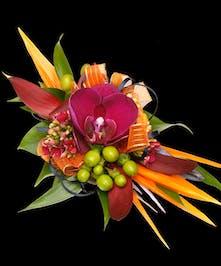 Exotic Tropical Wrist Corsage w/ Purple Phaleonopsis Orchid