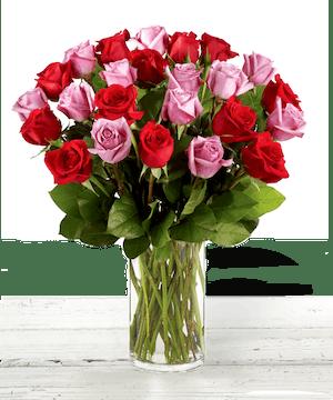 Red Roses and Pink Roses, Anniversary Roses, Atlanta