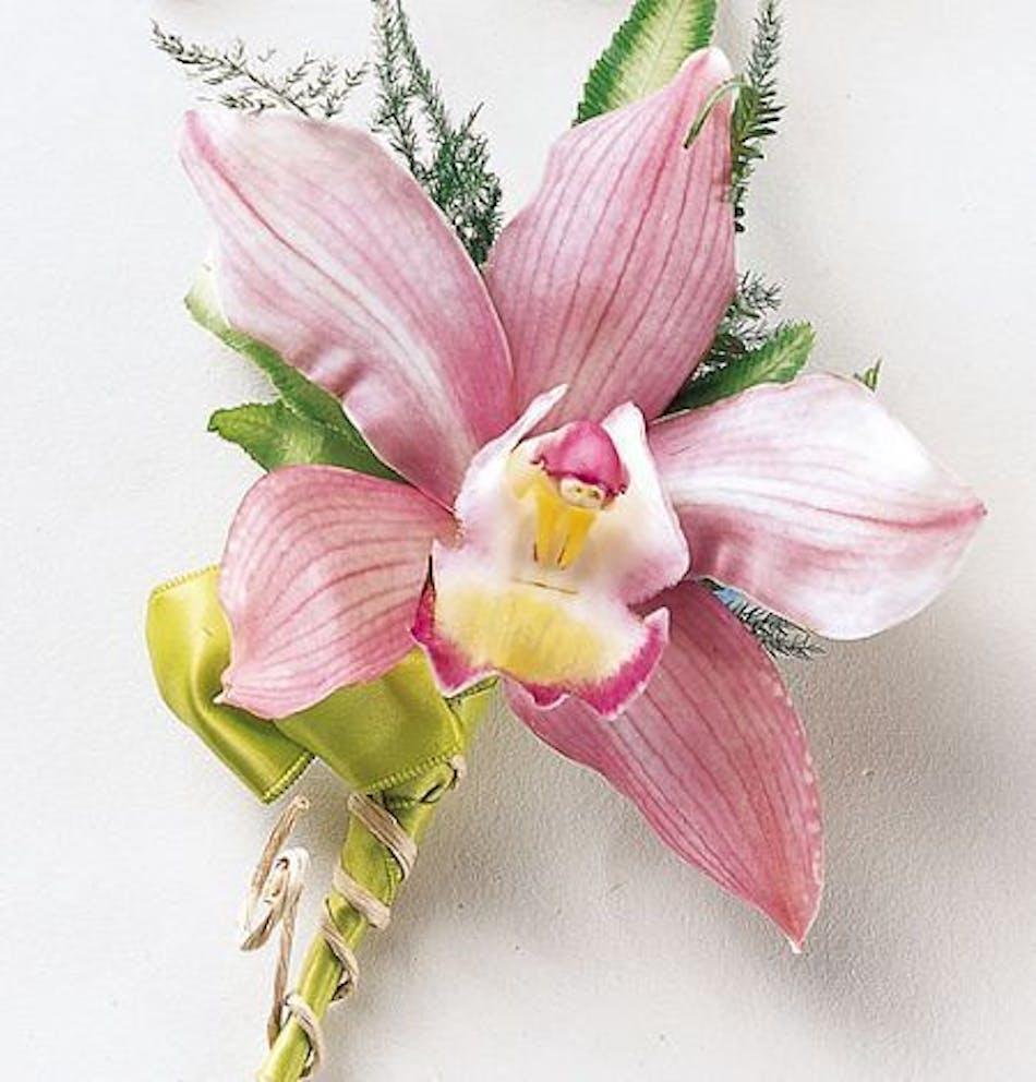 Cymbidium Orchid Wrist Corsages: Pink Mink Cymbidium Orchid Corsage