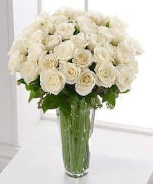 Elegant White Roses