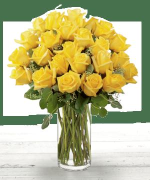 Premium Yellow Roses from Ecuador, Atlanta Flower Delivery
