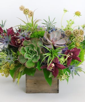 Carithers Highland Farm to Table Garden Box arrangements featuring hydrangea, orchids and foliages.