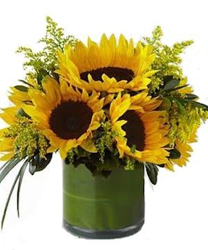 fresh sunflower arrangement