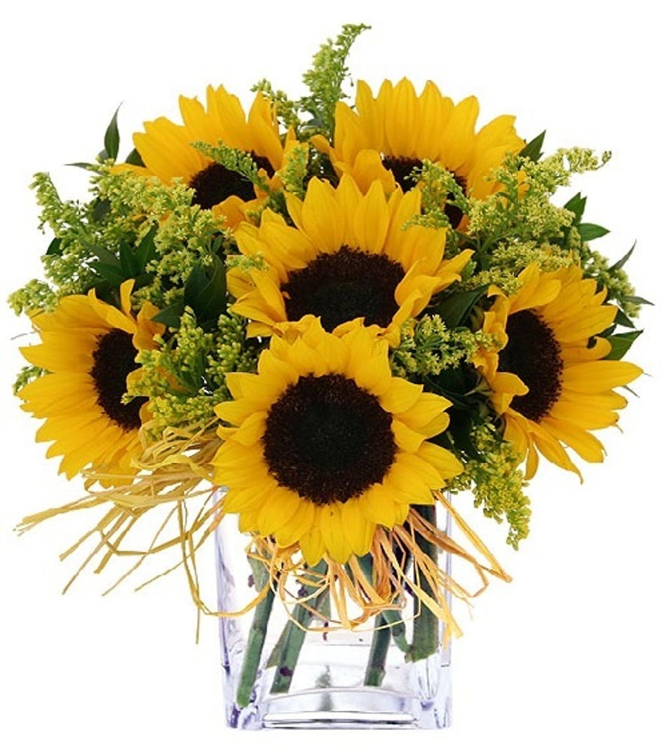 Carithers Flowers Endless Sunflowers Arrangement Same Day Delivery
