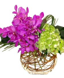 Orchids, Hydrangea, Contemproary Flower Arrangement Carithers Flowers Atlanta