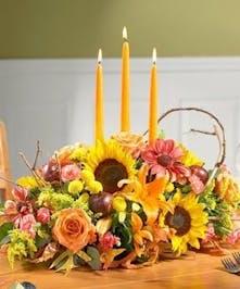 Say Happy Thanksgiving