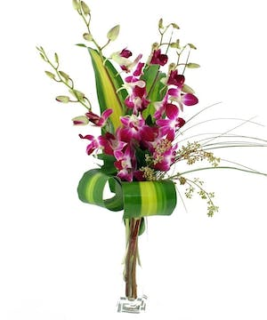 Exotic Orchid Budvase'