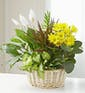 Dish Garden w/ Added Blooming Plant