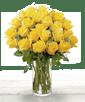 18 Yellow Ecuadorian Roses