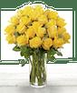 Two Dozen Yellow Ecuadorian Roses